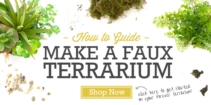 How To Guide: Make a Faux Terrarium