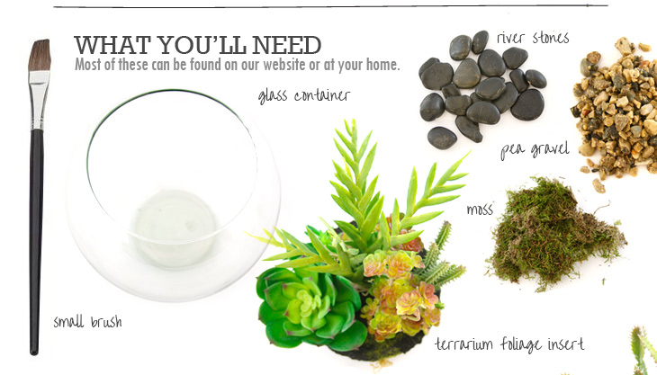 What You'll Need (Most of these can be found on our website or at your home): glass container, terrarium foliage insert, filler (stones, rock, or moss) and a small brush