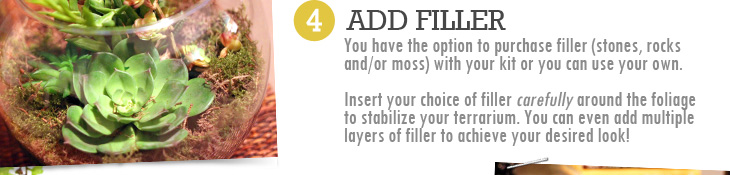 4. ADD FILLER - You have the option to purchase filler (stones, rocks and/or moss) with your kit or you can use your own. Insert your choice of filler carefully around the foliage to stablize your terrarium. You can add multiple layers of filler to achieve your desired look!